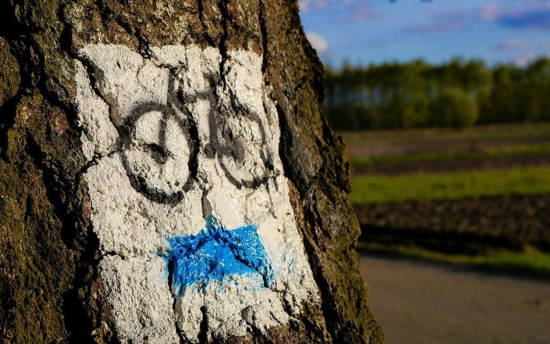 A kerékpárút kialakulása és jelentősége