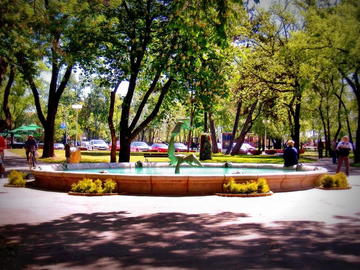 Park és közösségi tér